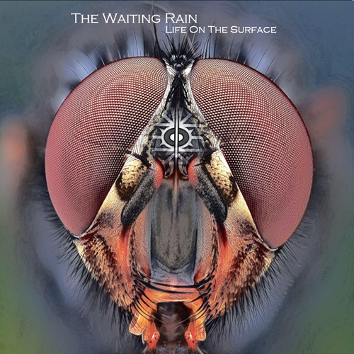 The Waiting Rain - Life on the Surface (2019)